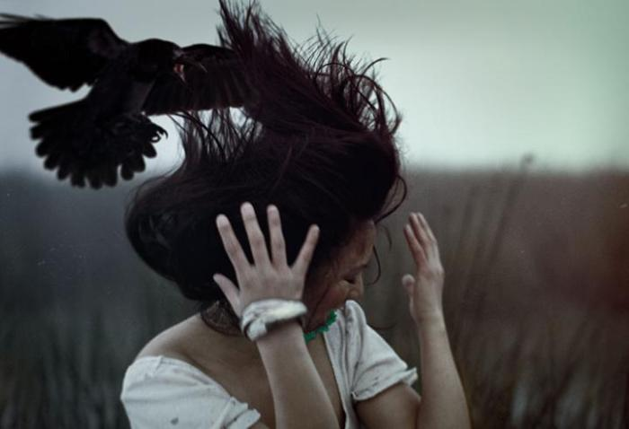 crow-attack_1